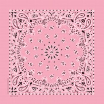 Light Pink Paisley