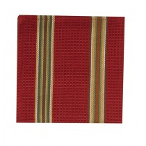Spice Stripe - Persimmon Dishcloth